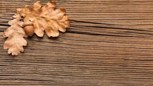 Bovenaanzicht van eikels en herfstbladeren