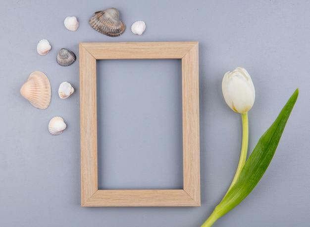 Bovenaanzicht van frame met bloem en schelpen rond op grijze achtergrond met kopie ruimte