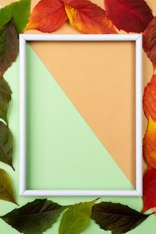 Bovenaanzicht van frame met herfstbladeren
