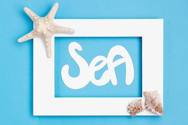 Bovenaanzicht van frame met zeeschelpen en zeesterren