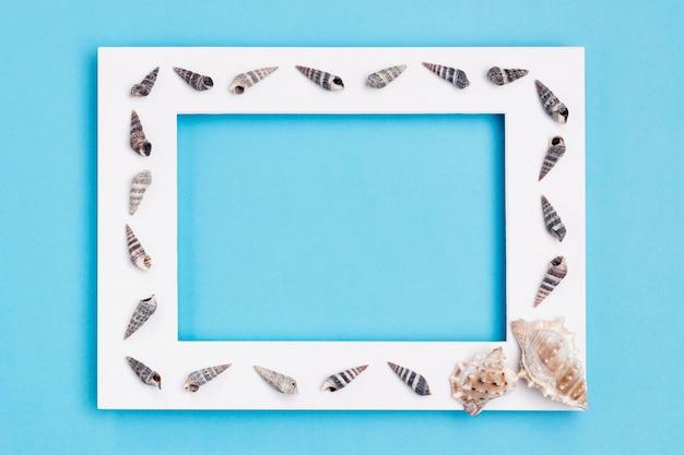 Bovenaanzicht van frame met zeeschelpen