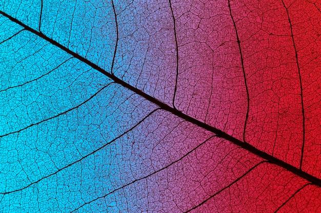 Bovenaanzicht van gekleurd geweven blad