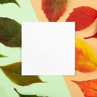 Bovenaanzicht van gekleurde bladeren met vierkant papier