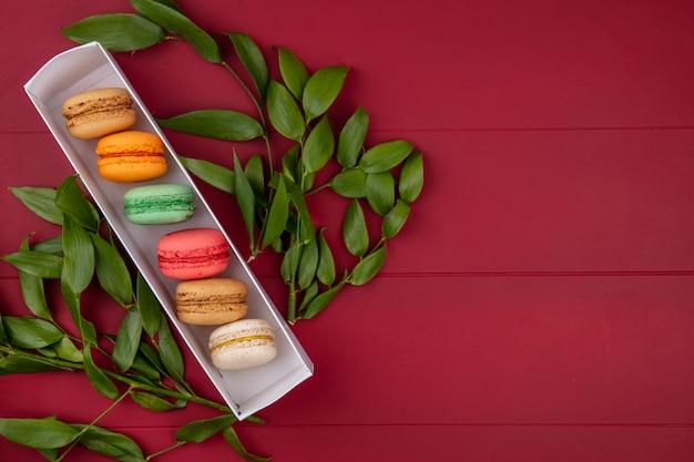 Bovenaanzicht van gekleurde macarons in een doos met bladtakken op een rood oppervlak