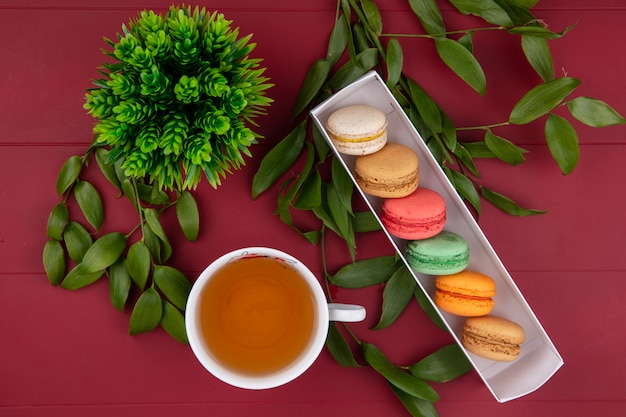 Bovenaanzicht van gekleurde macarons in een doos met een kopje thee en bladtakken op een rood oppervlak