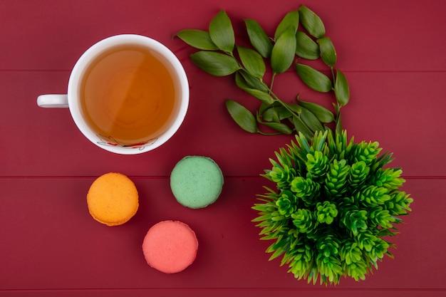 Bovenaanzicht van gekleurde macarons met een kopje thee en bladtakken op een rood oppervlak