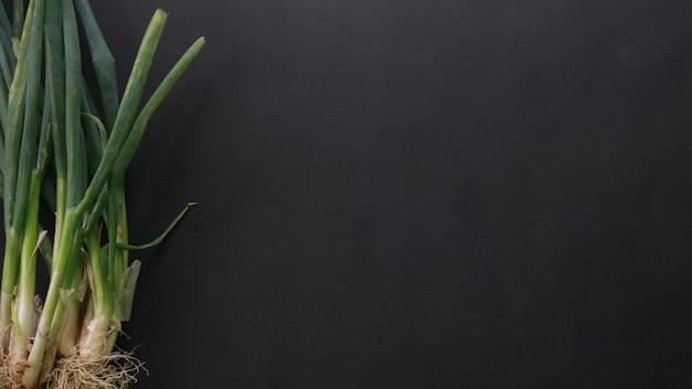 Bovenaanzicht van groene uien op lege achtergrond