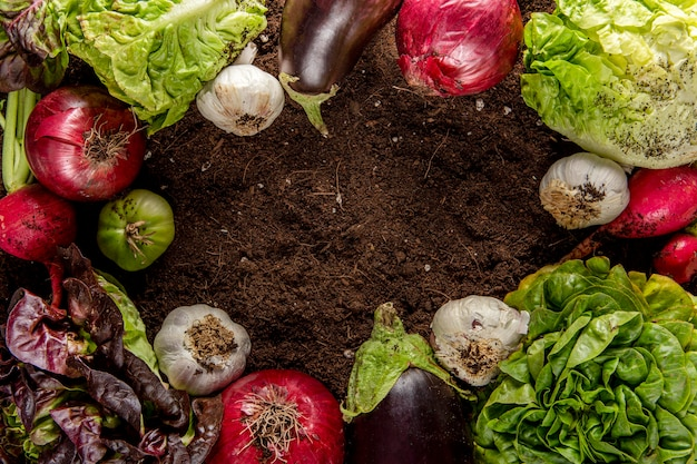 Bovenaanzicht van groenten met aubergine