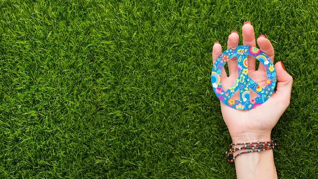 Bovenaanzicht van hand met vredesteken op gras met kopie ruimte