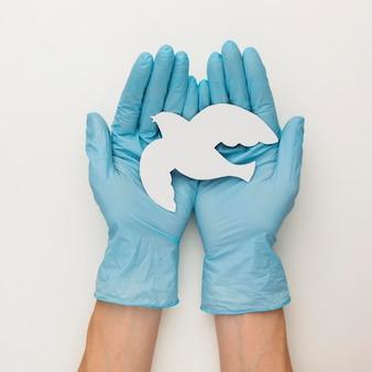 Bovenaanzicht van handen met handschoenen met duif