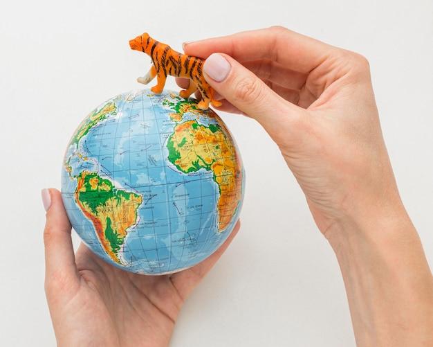 Bovenaanzicht van handen met planeet aarde en tijger beeldje voor dierendag