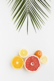 Bovenaanzicht van heerlijke vruchten en blad
