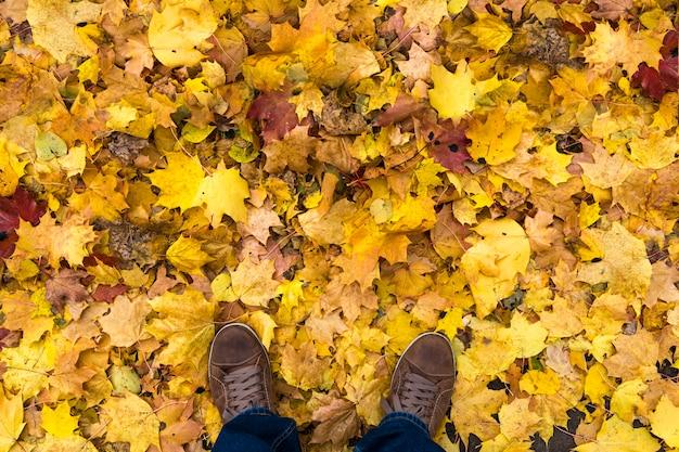 Bovenaanzicht van heren sneakers. een man staat op een geel herfstgebladerte.