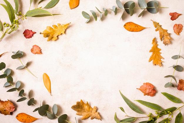 Bovenaanzicht van herfstbladeren en vegetatie