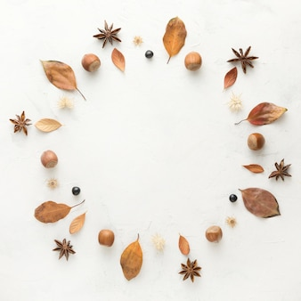 Bovenaanzicht van herfstbladeren met steranijs en kastanjes