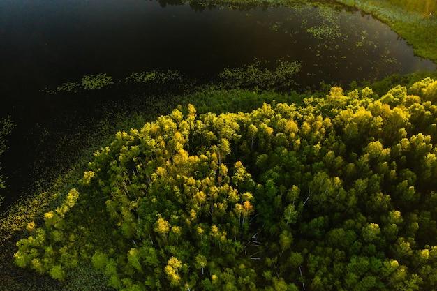 Bovenaanzicht van het meer bolta in het bos in het braslav lakes national park