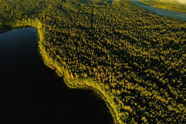 Bovenaanzicht van het meer bolta in het bos