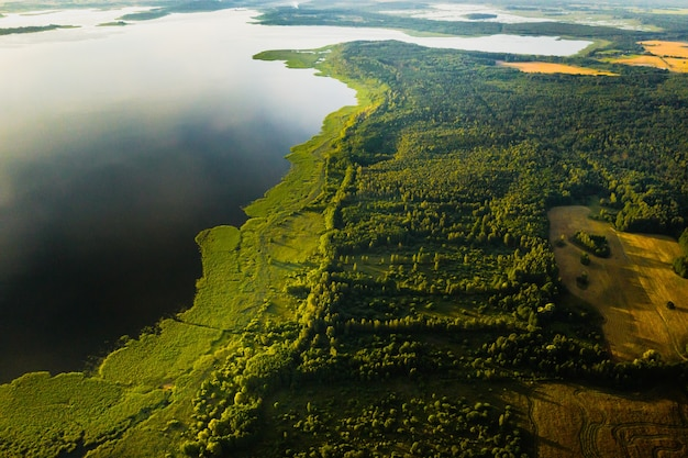 Bovenaanzicht van het meer drivyaty in het bos in het braslav lakes national park bij zonsondergang