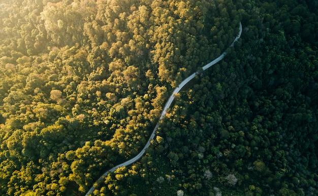 Bovenaanzicht van het platteland weg door het groene bos en berg