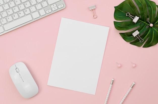 Bovenaanzicht van kantoorbenodigdheden met plant toetsenbord