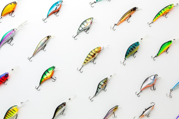 Bovenaanzicht van kleurrijke assortiment van vis aas