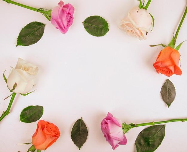Bovenaanzicht van kleurrijke rozen geïsoleerd op een witte achtergrond met kopie ruimte