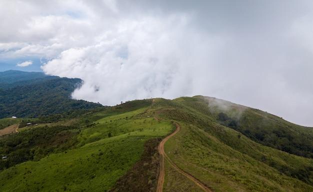Bovenaanzicht van landelijke weg die door het groene bos en de bergen