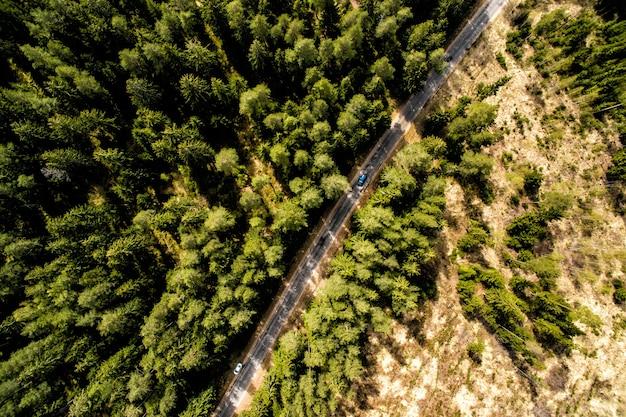 Bovenaanzicht van landelijke weg, pad door het groene bos en platteland. zondag