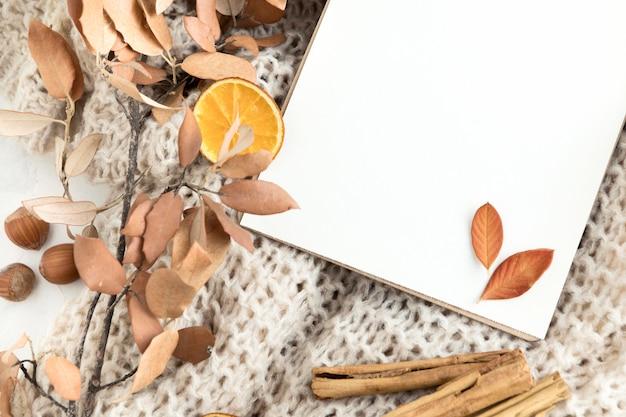 Bovenaanzicht van lege bordje met herfstbladeren en kaneelstokjes