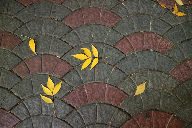 Bovenaanzicht van levendige gele herfstbladeren op de stoep voetgedeelte