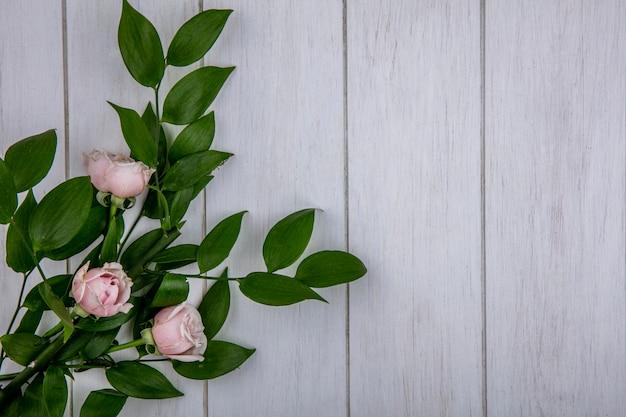 Bovenaanzicht van licht roze rozen met bladeren op een grijze ondergrond
