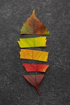 Bovenaanzicht van lood gemaakt van verschillende gekleurde bladeren