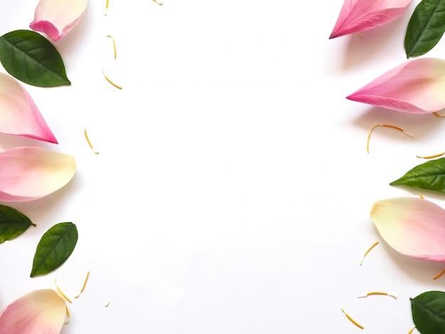 Bovenaanzicht van lotus bloemblaadjes met groene bladeren en gele stuifmeel op wit