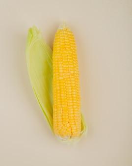 Bovenaanzicht van maïs en zijn schelp op wit