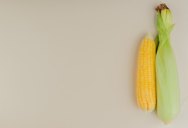 Bovenaanzicht van maïskolven aan de rechterkant en wit met kopie ruimte
