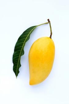 Bovenaanzicht van mango, tropisch fruit sappig en zoet.