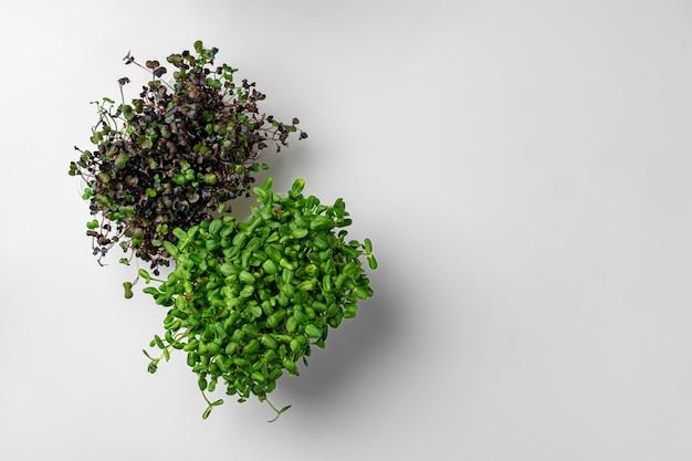 Bovenaanzicht van micro groene dienbladen op witte achtergrond