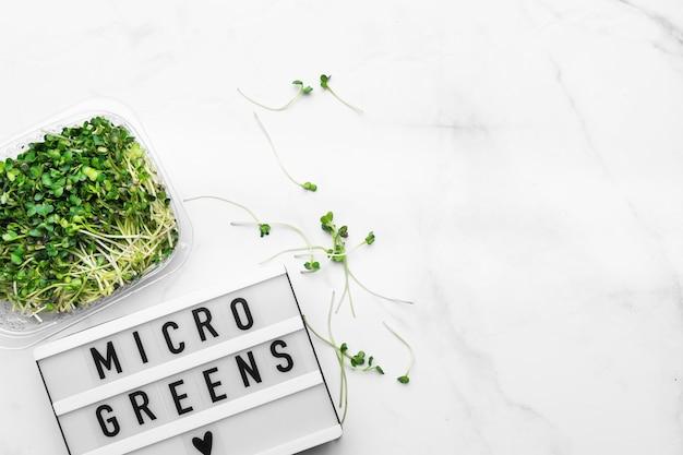 Bovenaanzicht van microgreens en lightbox