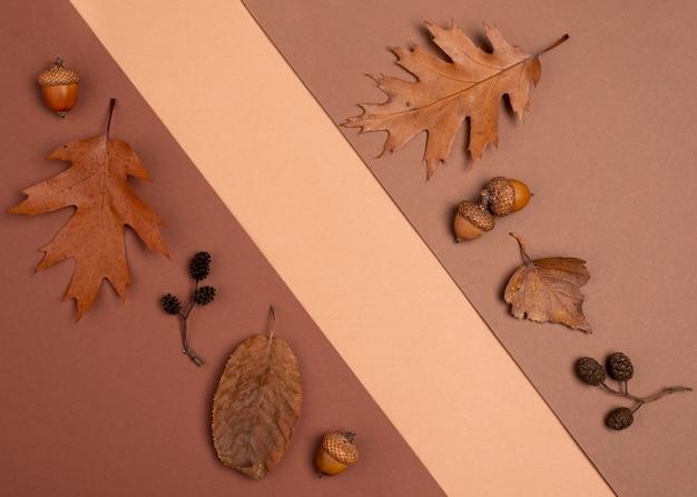 Bovenaanzicht van monochromatische variëteit aan bladeren