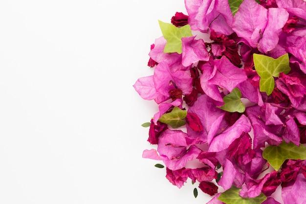 Bovenaanzicht van mooie bloemen concept