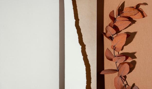 Bovenaanzicht van papieren met gedroogde bladeren