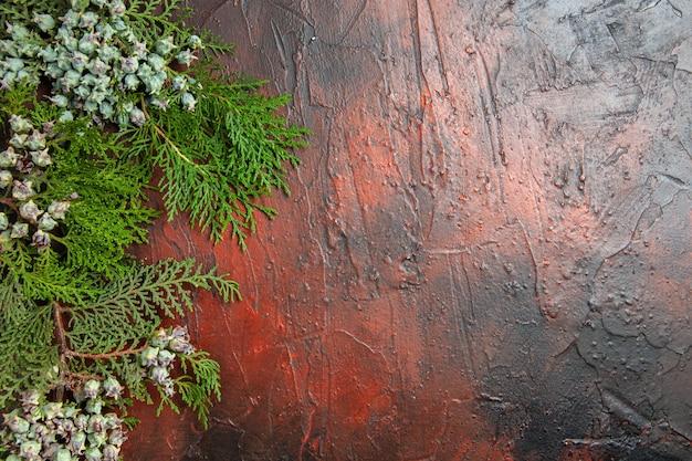 Bovenaanzicht van pijnboomtakken met kegels op donkerrood oppervlak