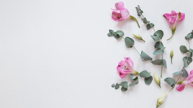 Bovenaanzicht van prachtig bloemenarrangement