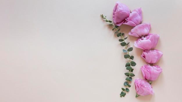 Bovenaanzicht van prachtige bloemensamenstelling