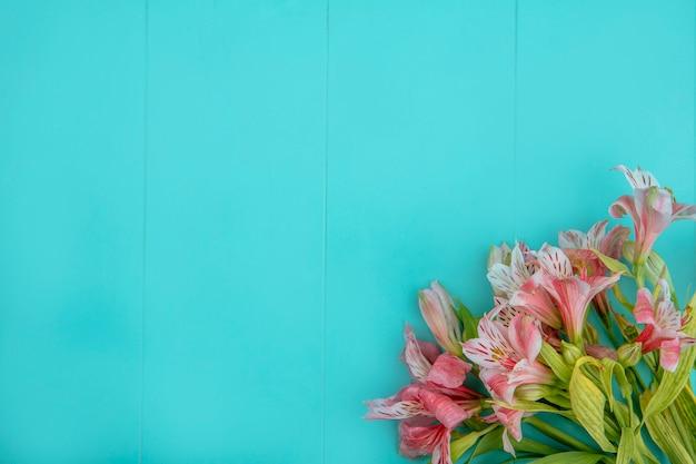 Bovenaanzicht van roze lelies op een blauwe ondergrond