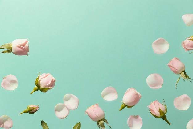 Bovenaanzicht van roze lente rozen met kopie ruimte