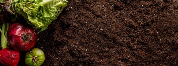 Bovenaanzicht van salade met uien en kopie ruimte