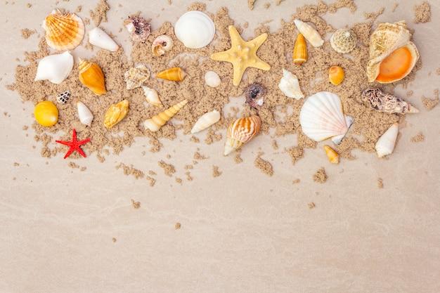 Bovenaanzicht van schelpen met zand