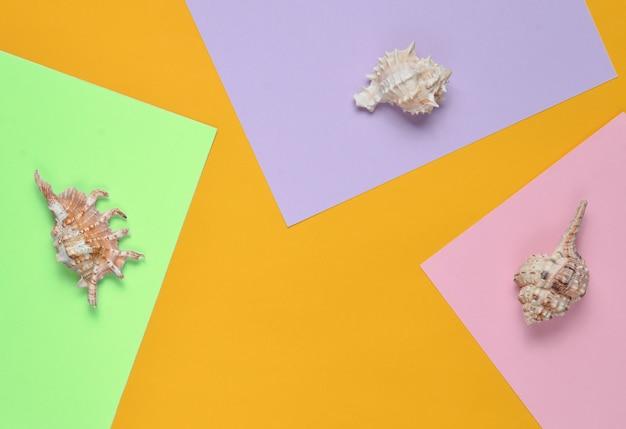 Bovenaanzicht van schelpen op een gekleurd papier