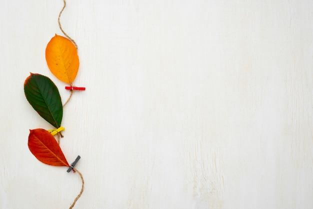 Bovenaanzicht van string met herfstbladeren en kopie ruimte